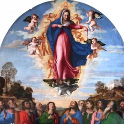 Assunzione della Vergine (particolare)