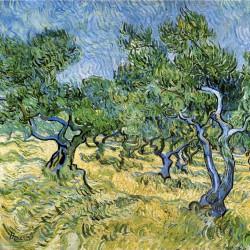V.Gogh, Ulivi