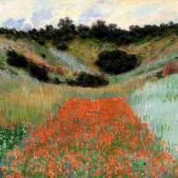 C.Monet, Campo di papaveri vicino a Giverny